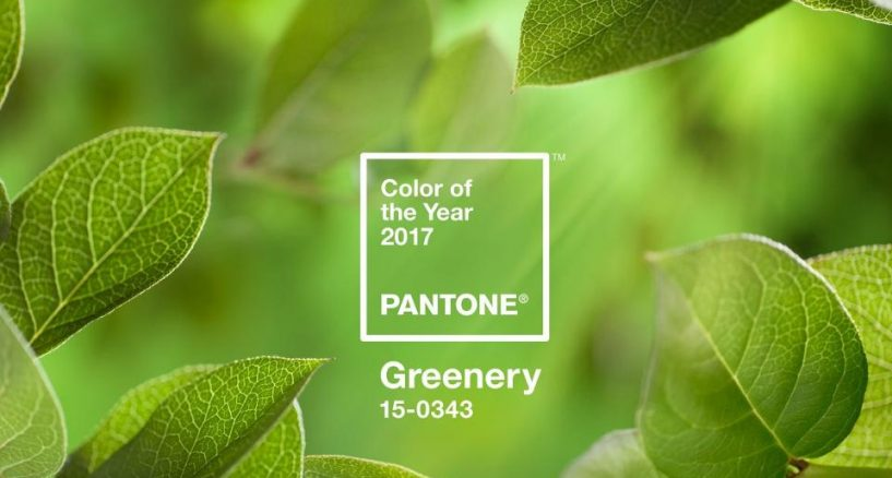 Pantone Unveils 2017 Colour of the Year, Yes To Green