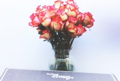 Holiday Spotlight on Bouqs, Stylish Flowers That Rock!