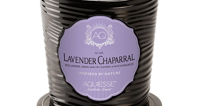Candle of The Day Spotlight On Aquiesse Lavender Chaparral Candle