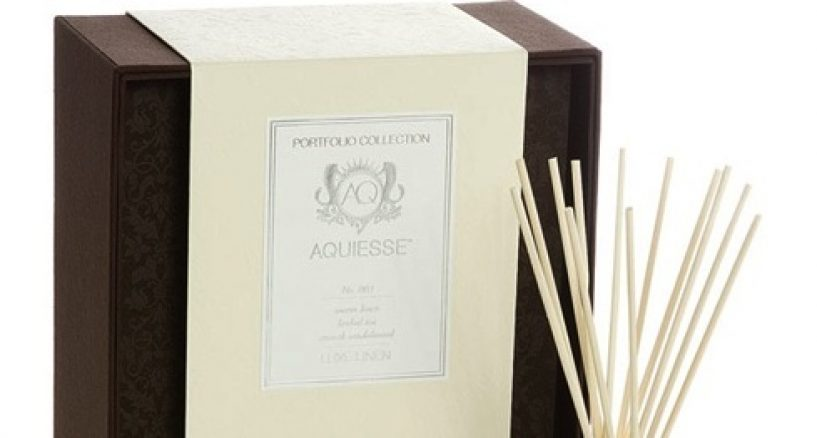 Aromatherapy Diffuser Spotlight On Aquiesse Aesthetic Scents
