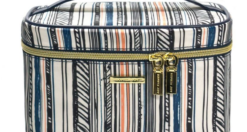 Sophia Joy Stripe Grid Small Train Case
